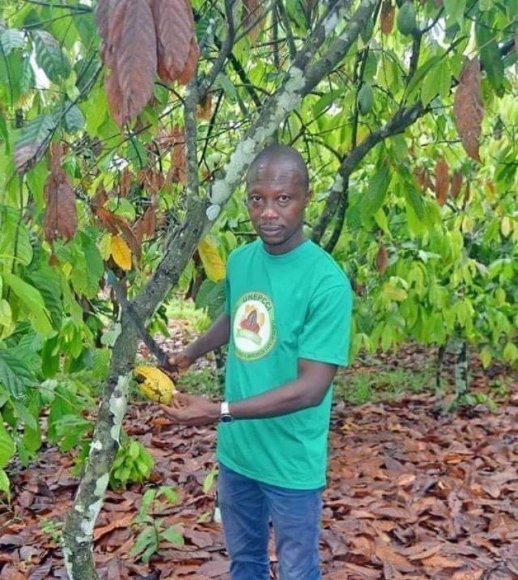 Côte d'Ivoire-Café-cacao-les enfants des planteurs : « Nous avons des soucis »