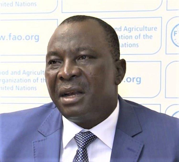 Côte d'Ivoire: «Gbagbo regrette le temps de ses cortèges arrogants» (Adjoumani, Pp du Rhdp)